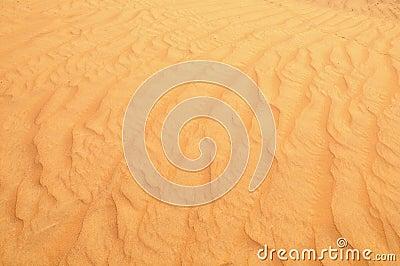 Desert sand close up
