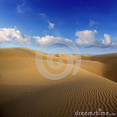 Desert sand dunes in Maspalomas Gran Canaria