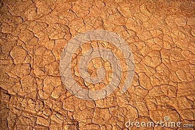 Desert skin