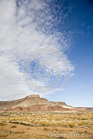 Desert in Southern Utah