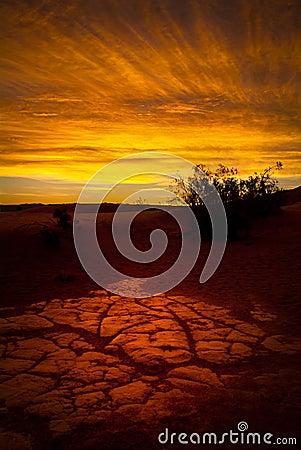 Free Desert Sunrise Stock Images - 17057154