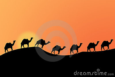 Desert Sunset Royalty Free Stock Photo - Image: 52995