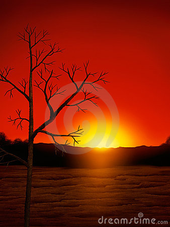Desert Sunset Digital Painting