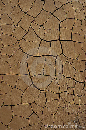 Desert Texture