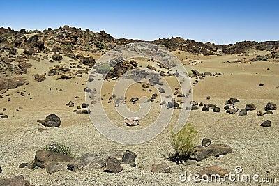 Desert trail,landscape at tenerife