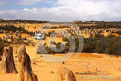 Desert traveler