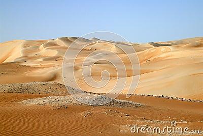 Desert VII