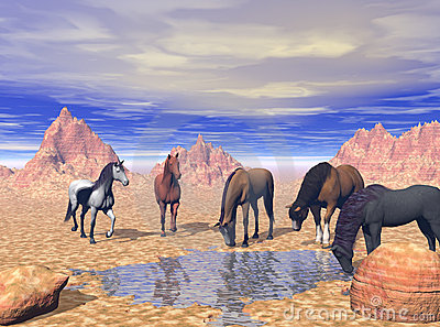 Desert Watering Hole