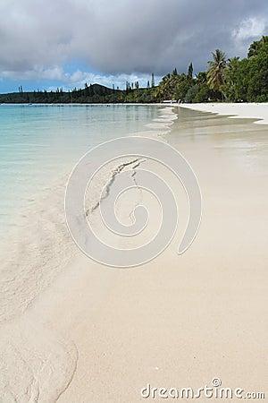 Desert white sandy beach