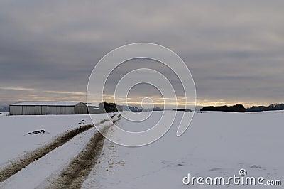 Deserted snowy road