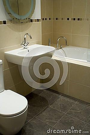Free Designer Bathroom Stock Photos - 3393393