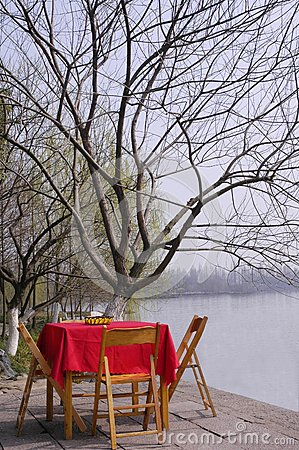 The desk and tree on waterside