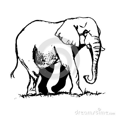 Dessin d 39 ensemble d 39 l phant illustration de vecteur image 70458617 - Dessin d un elephant ...