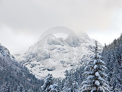 Dessus de montagne sous la neige