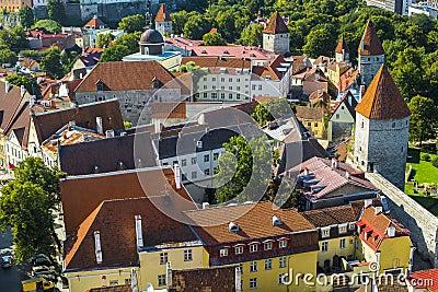 Dessus de toit de Tallinn Estonie