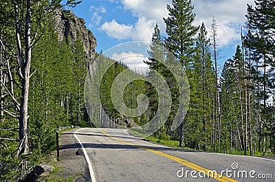 Destination Yellowstone