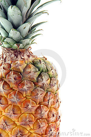 Free Detail Ananas Isolated Royalty Free Stock Photography - 4622127