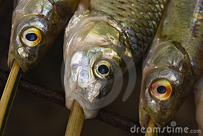 Detail of barbecued fish (1)