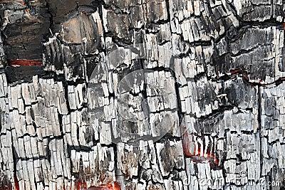 Detail of burnt wood