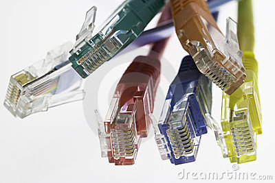 Detail of five network cables and a flat cable