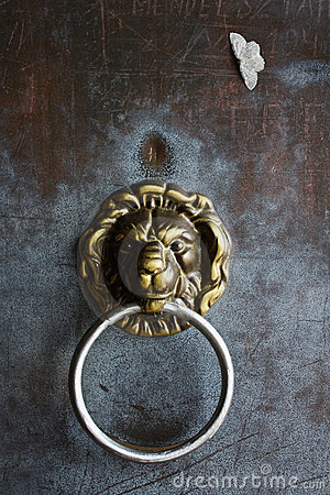 Detail of German Lion Door Handle