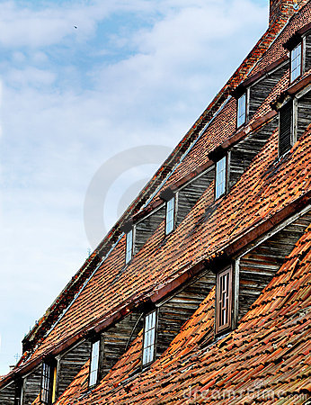Detail of the Large Mill of Gdansk