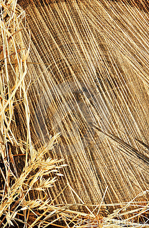 Free Detail Of Wooden Cut Texture And Dry Grass Hay Stock Photography - 17672862