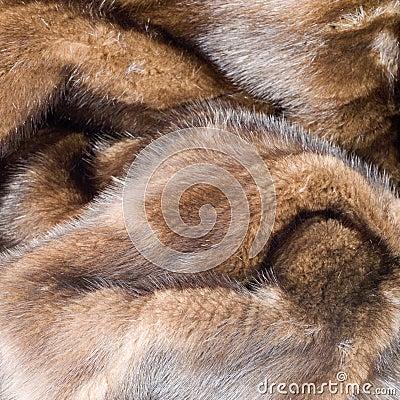 Free Detail Retro Mink Coat Square Stock Photos - 5603683