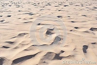 Detail sand beach