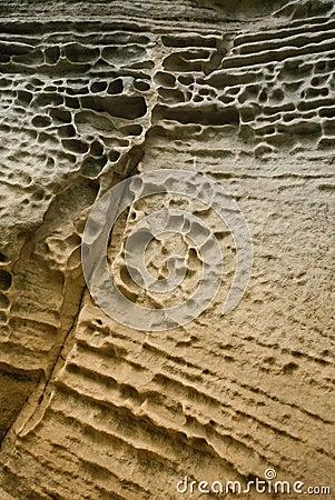 Detail of sandstone 1