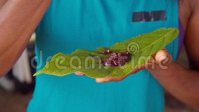Detail Shot of Tourist Woman Eating Organic Caca Paste by Hand on a Leaf stock video