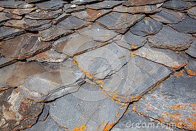 Detail Of A Slate Tile Roof Stock Photo Image 45414610