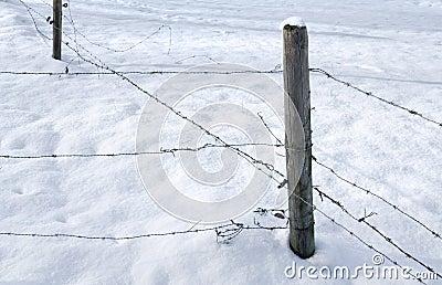 Snowbound barbed wire fence