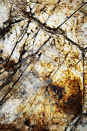 Free Detail The Groove Surface Stone Royalty Free Stock Photography - 117361577