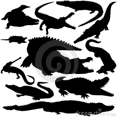 Free Detailed Vectoral Crocodile Silhouettes Stock Image - 9058571