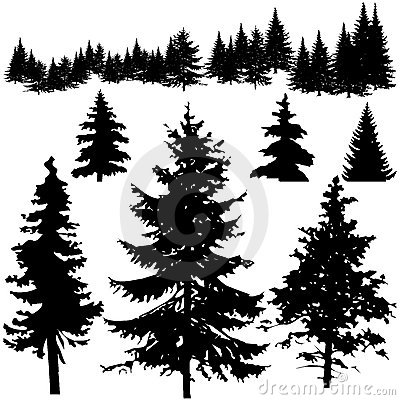 Free Detailed Vectoral Pine Tree Sillhouettes Stock Photography - 8932932