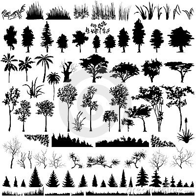 Free Detailed Vectoral Tree And Plant Silhouettes Royalty Free Stock Photos - 8916318