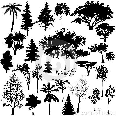 Free Detailed Vectoral Tree Silhouettes Stock Photography - 8916102