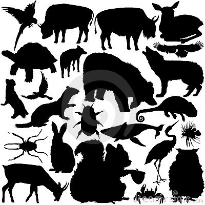 Free Detailed Vectoral Wild Animal Silhouettes Stock Photo - 8933080