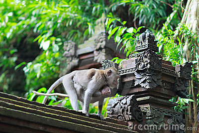Details of temple in Ubud monkey forest