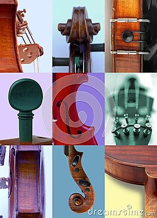 Details of violins