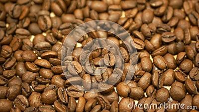 Detalhe do café torrado Brasil cultivado Variável Coffea arabica bio orgânico café espresso Preparação italiana vídeos de arquivo
