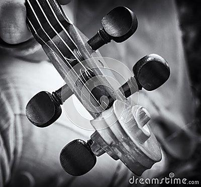 Detalhes do violino