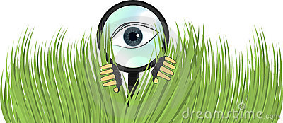 Detective Private Eye Spying Bushes Illustration