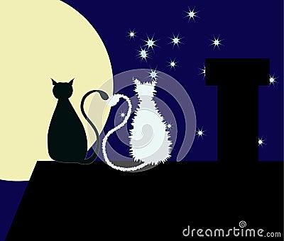 Deux chats sur le toit