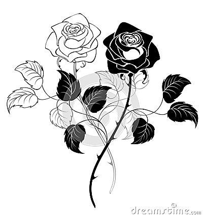 Deux roses