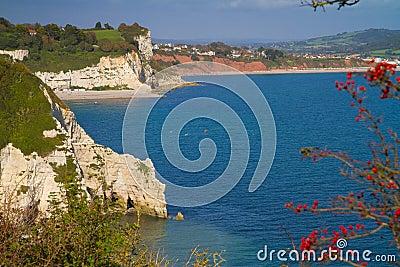 Devon cliffs and coastline