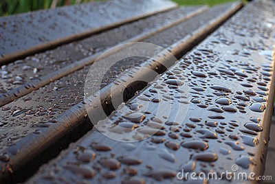 Dew on a bench