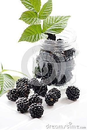 Free Dewberries Stock Images - 14781384
