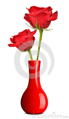 Free Dewy Red Rose In Vase Stock Photos - 47863763